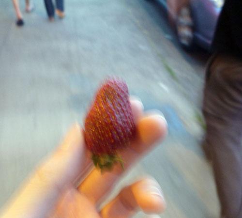 19-strawberry