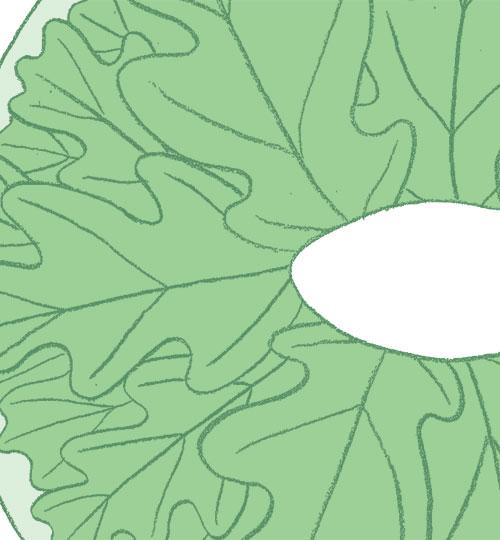 28-Leaf-mask