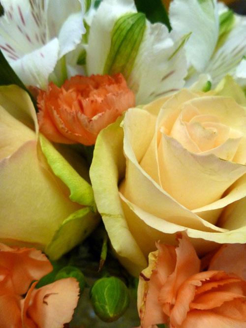 10-flowers2