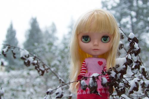 09-snowyblythe2