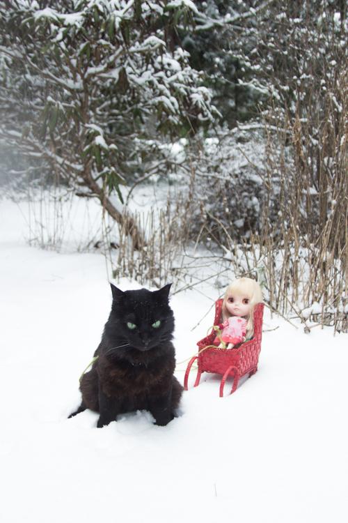 09-snowyblythe6